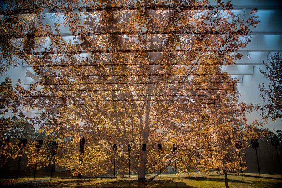 Autumn Motet