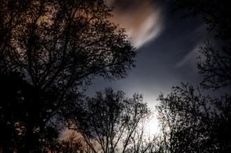 Moonful 03
